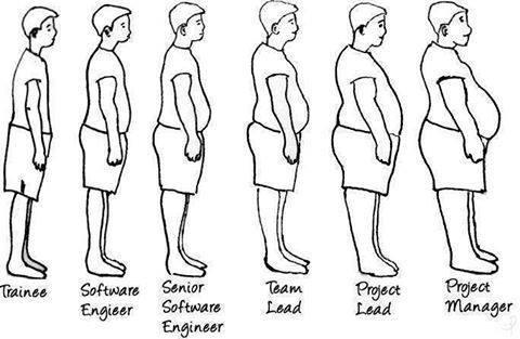 programmer-level